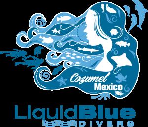 Liquid Blue Divers
